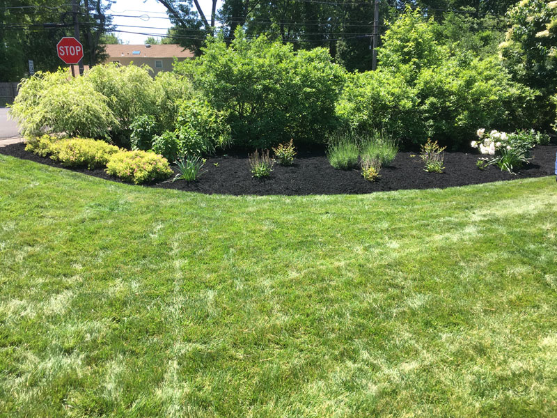 Monthly Lawn Mowing| Weed Trimming & Edging - Yardley PA